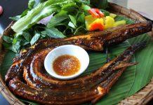 Mách bạn 3 món ăn từ cá chình vừa thơm ngon lại bổ dưỡng